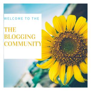 Blogging community - what I've learned