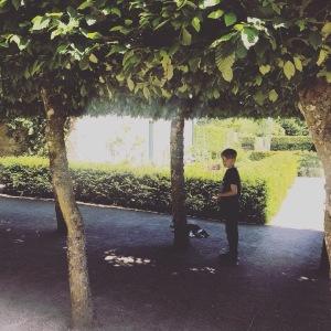 July favourites - Pitmedden Gardens