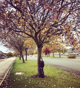 Autumn tree and my son (Aberdeen)