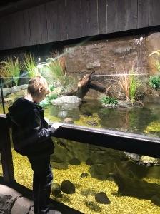 St. Andrews Aquarium